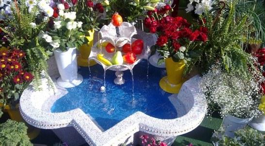 אגנית לבריכת נוי – הבסיס לבריכת נוי בגינה שלך